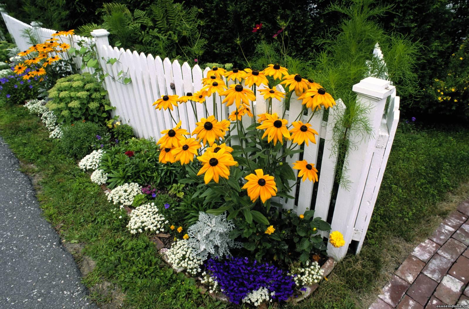 Как лучше сочетать садовые своими руками