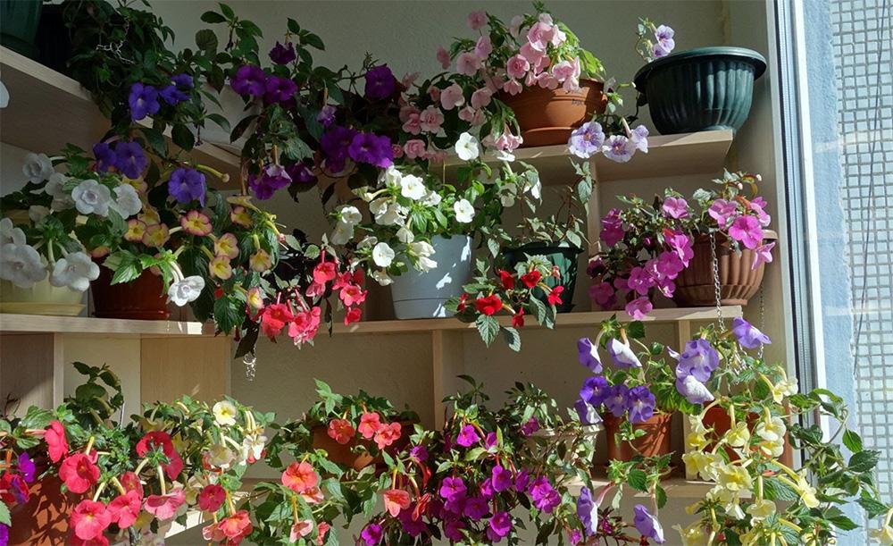 Как сделать зимний цветок фото 129