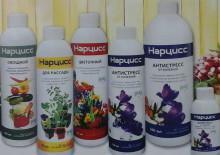 Нарцисс препарат