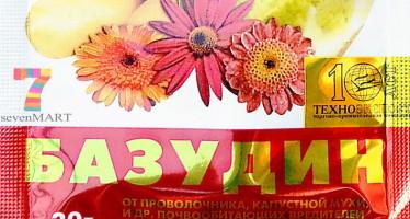Базудин