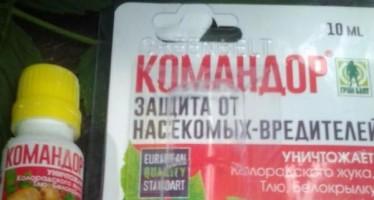 Инсектицид Командор