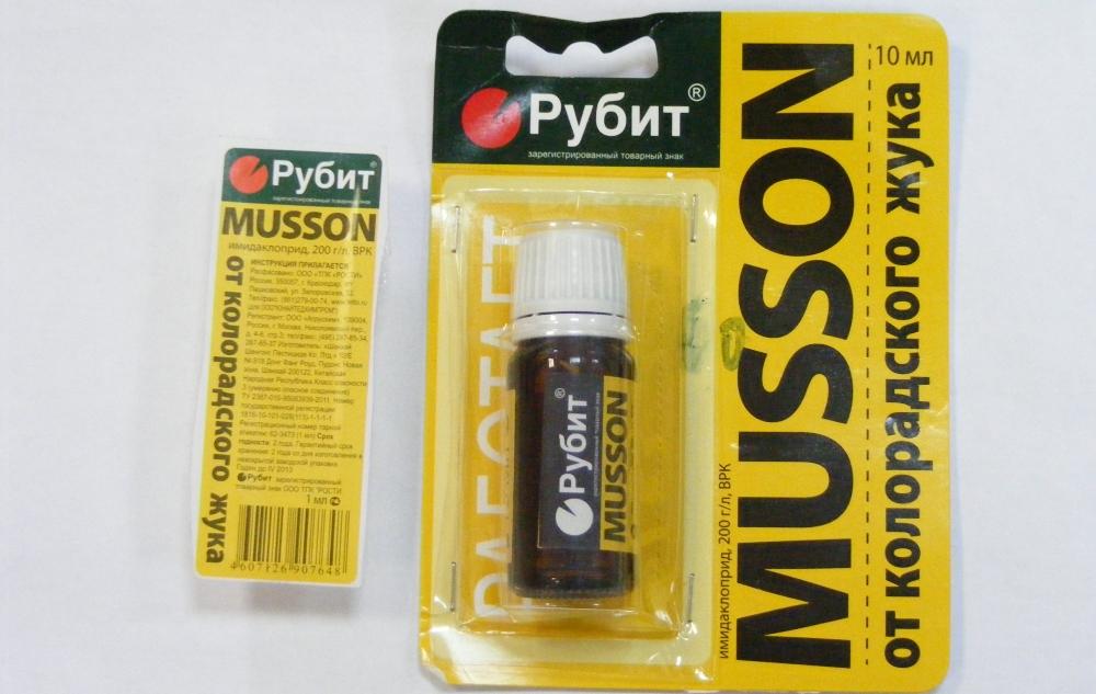 Муссон