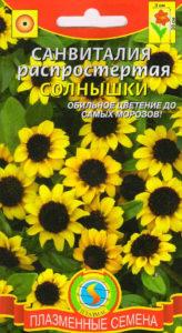Санвиталия семена