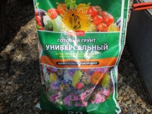 Подкормка и удобрения для комнатного цветка маранта