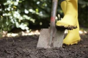 Почва, копка почвы