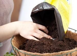 Почва для комнатного растения