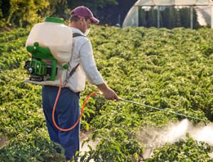Средства защиты при обработке инсектицидами
