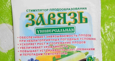 Препарат Завязь